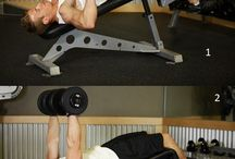 Exercises / Exercises related post from bodybuildingarena