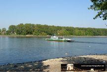 Rheinfähren / Sie sehen hier eine Auswahl meiner Fotos, mehr davon finden Sie auf meiner Internetseite www.europa-fotografiert.de.