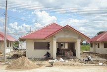 Constructii case Timisoara