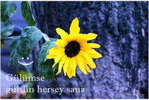 objektifimden yüreklere armagan  / cekimlerim  www.allah-ne-verdiyse.blogspot.de