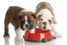Dog info / Pet food labels