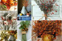 Fall, my favorite season / by Mary Ann Busby