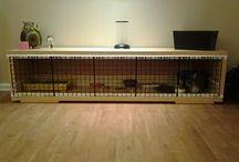 Kreative ideer til et hjem med kaniner / Få tips og gode idéer til et hjem med indendørs kaniner