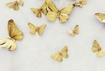 oro oro