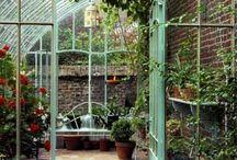 TUIN Greenhouse