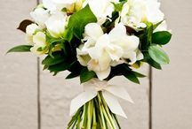 Flowers Auckland / Flowers from Roses Florist in Mt Eden Auckland