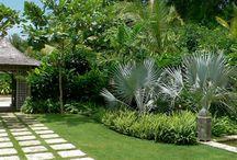 Bahçe Peyzaj Öneriler