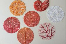 Fashion and textiles - pattern in nature
