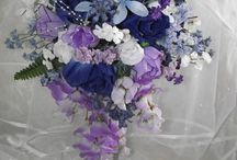 Purple and Light Blue