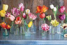 ...flower shoppe...