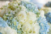 Flower of my life / Flowers