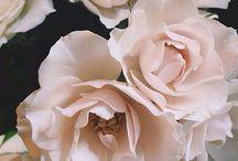 DESIGN | FLORAL FAB / FLOWERS!