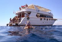 Cairo, Nile Cruise and Sharm El Sheikh Holidays