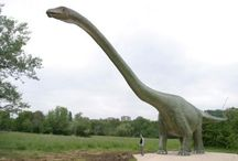 """Seismosaurus / Seismosaurus, meaning """"Earth-shaking lizard,"""" is one of the huge sauropods of the late Jurassic period. It lived from the Kimmeridgian to the Tithonian age, around 154 to 144 million years past."""
