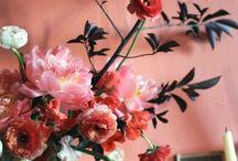 Flores . Inspirações