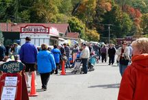 Foxburg Fall Festival / Since 2003, Foxburg has hosted the Fall Food, Art and Wine Festival attracting thousands of visitors from near and far!