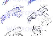 Drawings animals