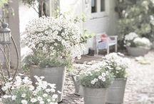 GardenMoments