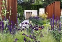 Opetus: moderni puutarhatyyli