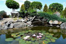 ogród z gnejsy.pl / kamień naturalny do ogrodu, kruszywa dekoracyjne, kora kamienna, płytka, głazy ogrodowe, szpilki, otoczaki, stone bark, garden boulders, monoliths, pebbles,