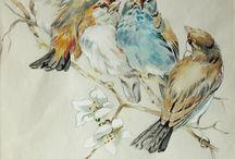 Aquarel vogel