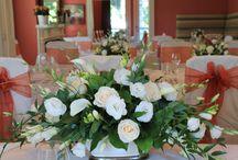 Niagara's Finest Weddings / Sharing intimate weddings