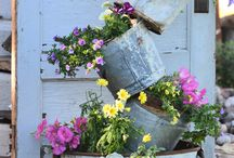 Garden ideas / by Marilyn Giesige