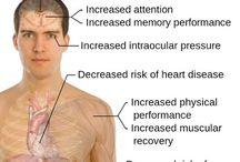 exercise motivator