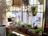Gardening /Green