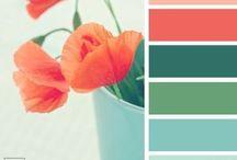 Colour Harmony