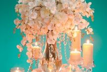 Dream wedding / by Nikki Morrone