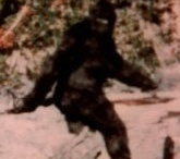 Bigfoot Sightings and Research / Bigfoot sightings and research news and information. I've been a Bigfoot researcher since 2005 because there were many reports of Bigfoot sightings in my former neighborhood, the Klamath National Forest in Northern California. Since then, I've moved to Northern Idaho, another place where there have been Bigfoot sightings. My site: http://bigfootsightings.org