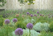 Beautiful Gardens / Inspiring Gardens and Outdoor Spaces