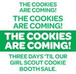 Girl Scout cookie Sales / Helpful hints for sales