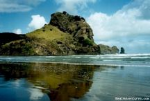 NZ / Hills, green grass, mountains, beaches, and vineyards are all found here. / by Jonathan See