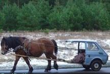 Post Apocalypse Transportation