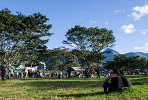 Selvamonos Festival / Selvamonos is the biggest music and arts festival in Peru!