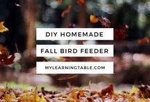 Fall / Autumn, Anything Fall, fall activities, outdoors, fun, ideas