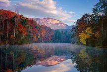 South Carolina / by Jill Rue