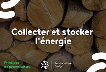 Principes de permaculture / Retrouvez ici les illustrations sur les principes de permaculture mis en ligne par PermacultureDesign. Découvrez nos articles complets sur : http://www.permaculturedesign.fr