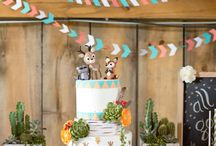 PARTIES + Boys Party Ideas / Styling inspiration and theme ideas for boys birthdays and parties