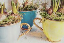 spring decoration/jarní dekorace