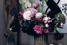 Flowers / Plants