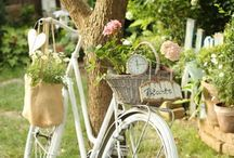 bicycle dream