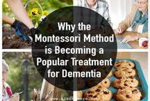 Montessori Memory Plan