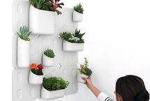 indoor wall plqnters