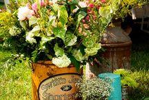 Container Garden Designs Ideas / by Shelli Barnes