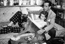 Stars with Pets