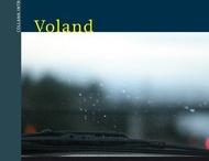 Premio Strega 2013 / I 12 libri candidati al Premio Strega 2013. Per chi fate il tifo?