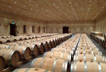 Château Fourcas Hosten / Visite du vignoble et des chais au Château Fourcas Hosten à Listrac Médoc Bordeaux Réservez avec winetourbooking.com